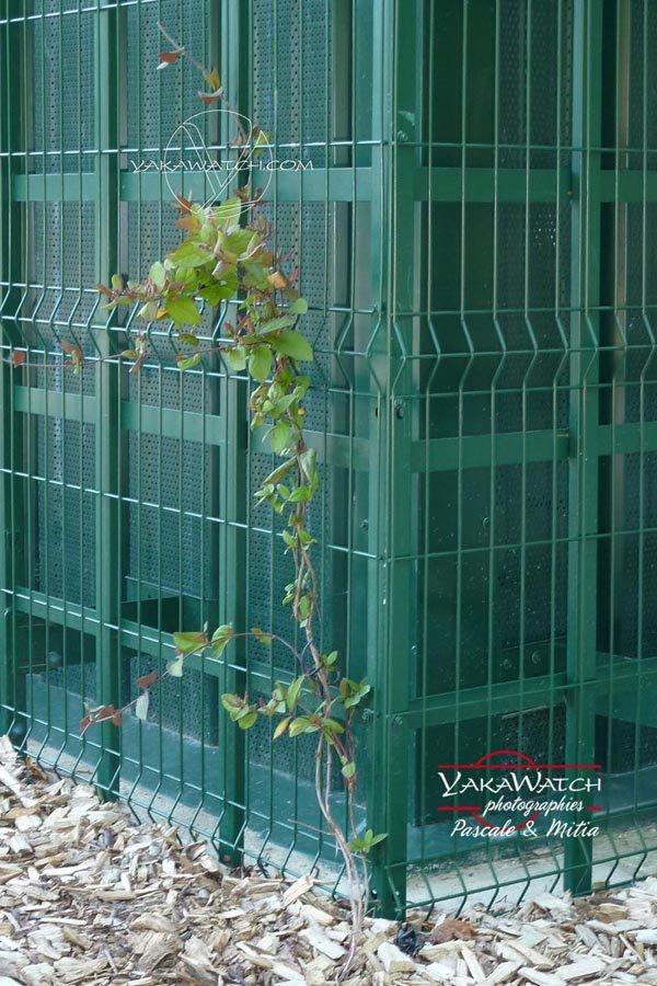 La structure du Jardin Technique sera recouverte de végétation