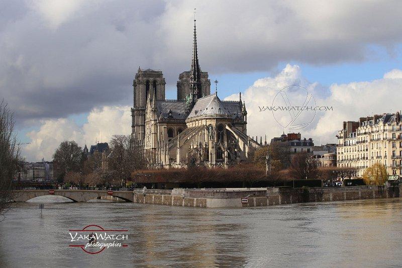 Notre Dame et la Seine en crue à Paris - Janvier 2018