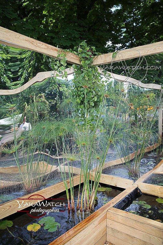 Projection, jardin éphémère