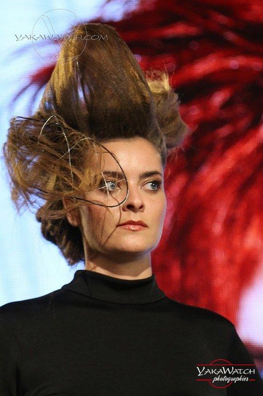 Show coiffure Stephan de Toulouse au MCB Paris 2016