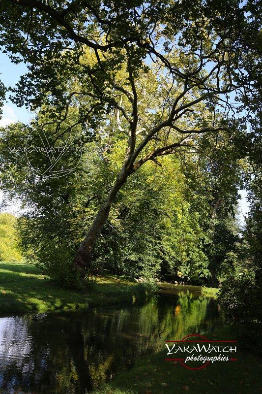 Jardin à l'anglais au château de Rambouillet