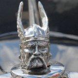 Rover Viking